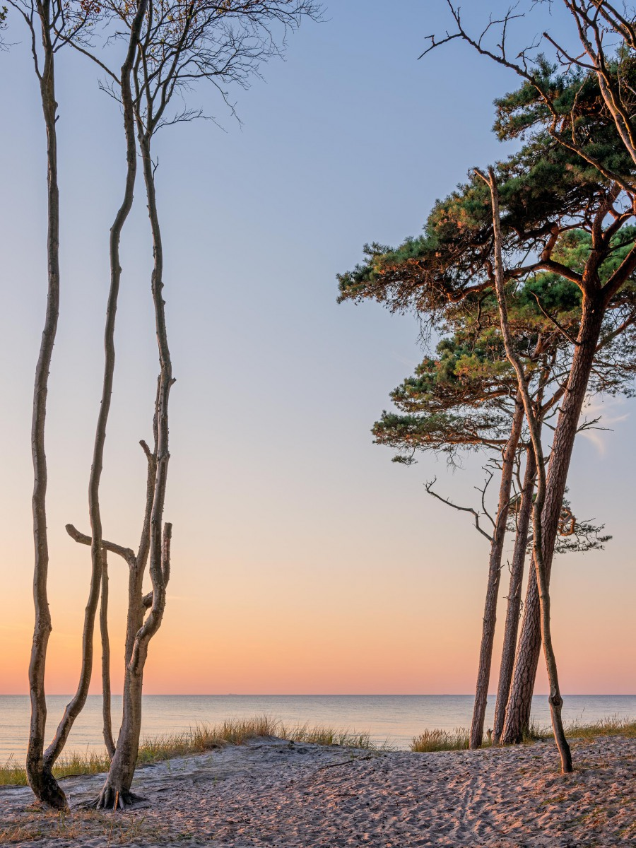 Weststrand, Ostsee, August 2020
