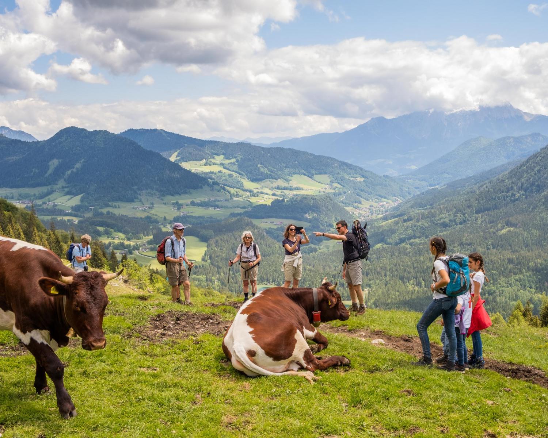 Berchtesgadener Land, Juni 2020